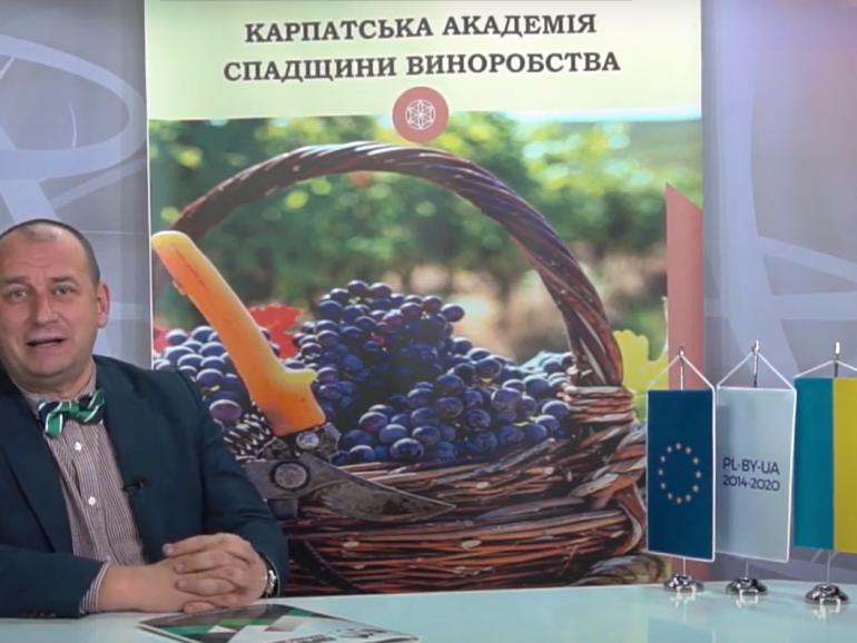 Як зробити вино однією з туристичних принад регіону? Відповіді у новій лекції курсу «Карпатська винна академія»
